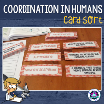 Coordination in Humans Vocabulary Card Sort
