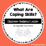 Coping Skills Categories! A Classroom Guidance Lesson on C