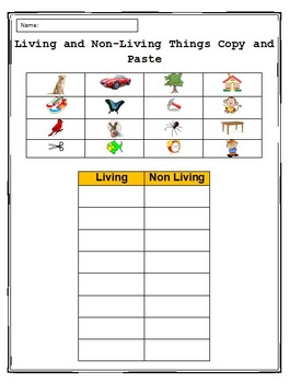 Copy and Paste Practice in Microsoft Word - Living & Non-living Things