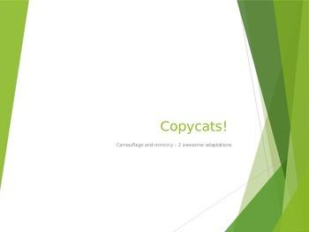Copycats PowerPoint