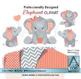 Coral Gray Baby peanut Clip Art