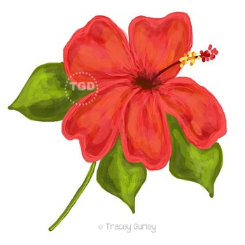 Coral Hibiscus Illustration, Hibiscus clip art, Printable Tracey Gurley Designs