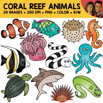 Coral Reef Animal Clipart