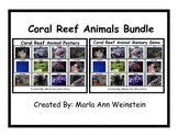 Coral Reef Animals Bundle