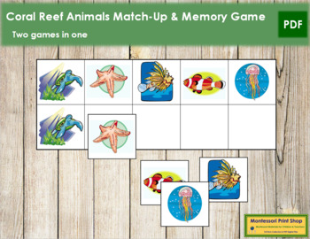 Coral Reef Animals Match-Up and Memory