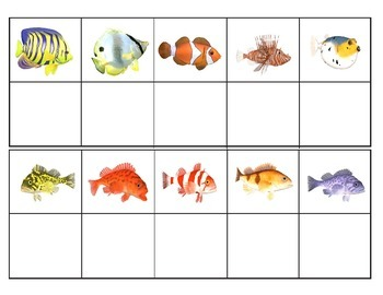 Coral Reef Animals:  Mini Matching and Vocabulary Enrichment Cards