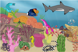Coral Reef Biome and Animals