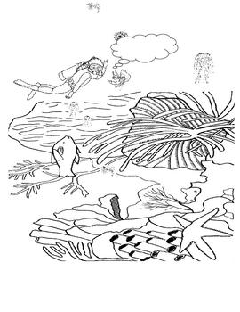 Coral Reef Coloring Sheet - Fun Activity