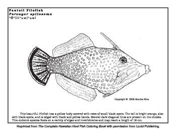 Coral Reef Coloring Sheets with info about Reef Etiquette