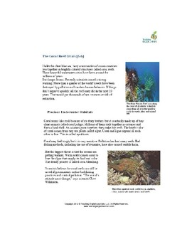 Coral Reef Crisis - with video comparing healthy and damaged reefs
