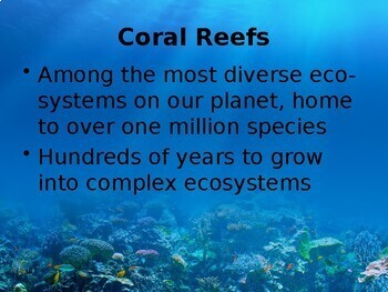 Coral Reef Damage Powerpoint