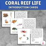 Coral Reef Introduction Activity