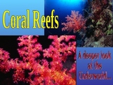 Coral Reef PPT