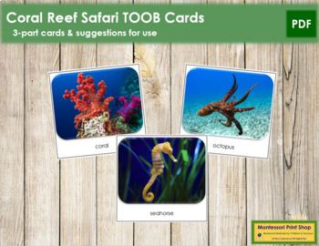 Coral Reef Safari Toob Cards - Montessori