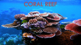 Coral Reefs - PowerPoint