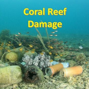Coral Reefs Damage