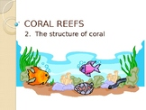 Coral Structure - (Lesson 2 of 10 Coral Reef Unit)