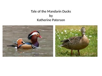 "Core Curriculum literature ""The Tales of the Mandarin Ducks"""