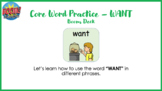 Core Word Practice - WANT with Boom Cards