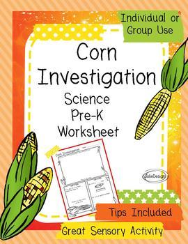 Corn Investigation Pre-K Fall Science Worksheet