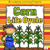Corn Life Cycle Mega Bundle (Reader, Lap Books, Picture / Voc. Cards, & Writing)