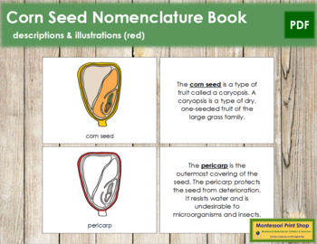Corn Seed Nomenclature Book - Red