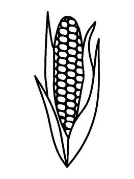 Corn Templates Corn Coloring Pages Corn Outline Corn Template