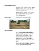 Cornell Notes (Africa Seeks a Better Future) Modern World Issues