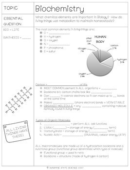 Cornell Notes Biochemistry