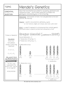 Cornell Notes Genetics