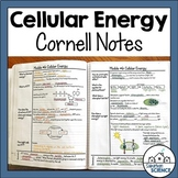 Cornell Notes for Biology - ATP - Photosynthesis and Cellu