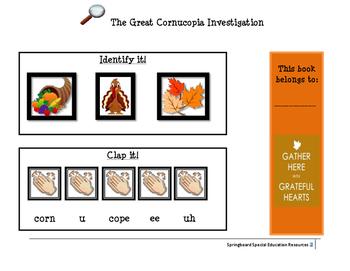 Cornucopia Investigation