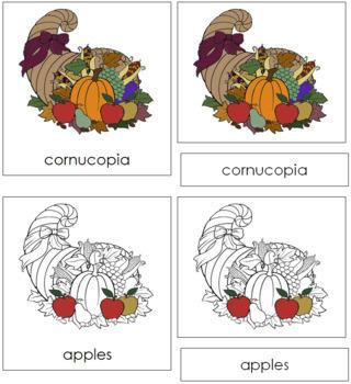 Cornucopia Nomenclature Cards
