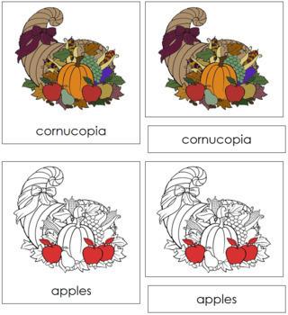 Cornucopia Nomenclature Cards (Red)