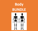 Corpo (Body in Italian) Bundle