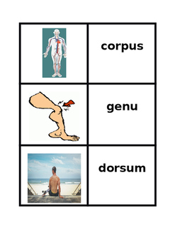 Corpus (Body in Latin) Concentration games