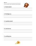Correct Sentences Test