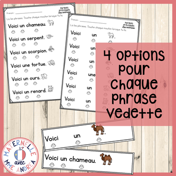 Correspondance mot à mot - les animaux (FRENCH Animals 1:1 Correspondence)
