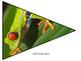Costa Rica Pennant Banner