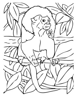 ANiTAiLS:Cotton-topped Tamarin Story, Crossword, Coloring Page and More