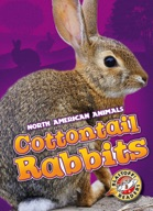 Cottontail Rabbits