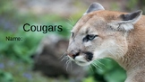 Cougars Vocab Question Slides