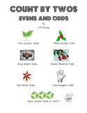 Count By Twos   Evens and Odds   By J V S Vasan