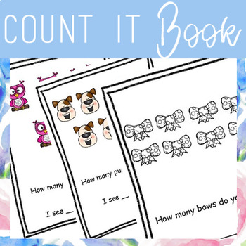 Count IT Book