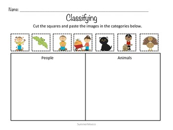 Count, Sort, Classify Packet