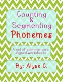Counting and Segmenting Phonemes