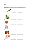 Count/Noncount noun quiz with pictures