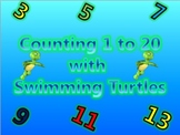 Counting 1 - 20 Activity with Cute Baby Turtles Swimming U