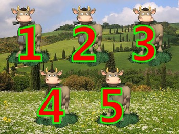 Counting 1 - 5 with Cows Chewing Grass