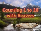 Counting 1 to 10 with Beavers